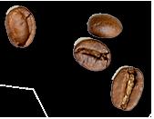 Café Brûlerie de la Vallée - Grains de café